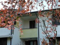 Case e villette a schiera a Vicenza